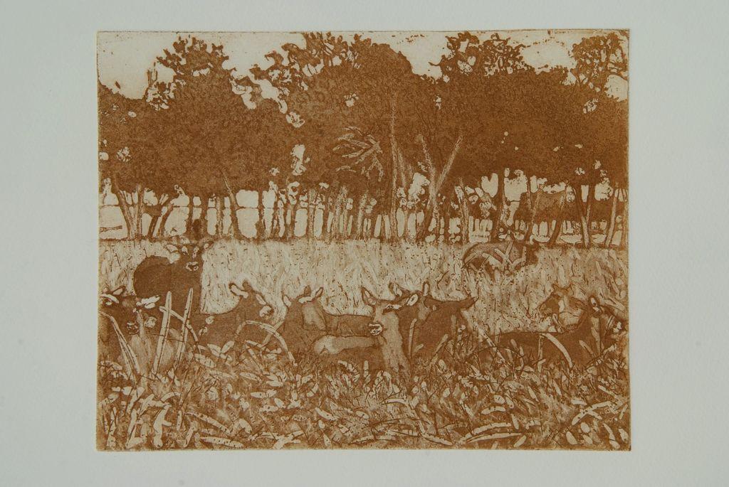 Waterbuck-lying-in-the-shade-Kenya-36x40-etching-1
