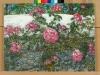 Roses against garden wall